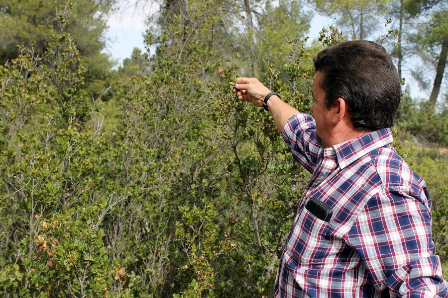 """""""Potenciar la gestión de los montes puede ayudarnos a combatir situaciones como la del Coronavirus"""""""