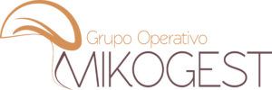 Logo micogest