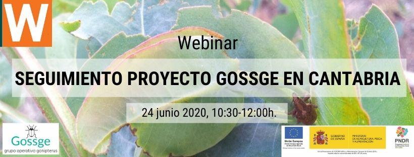 Formación online gratuita_proyecto GOSSGE