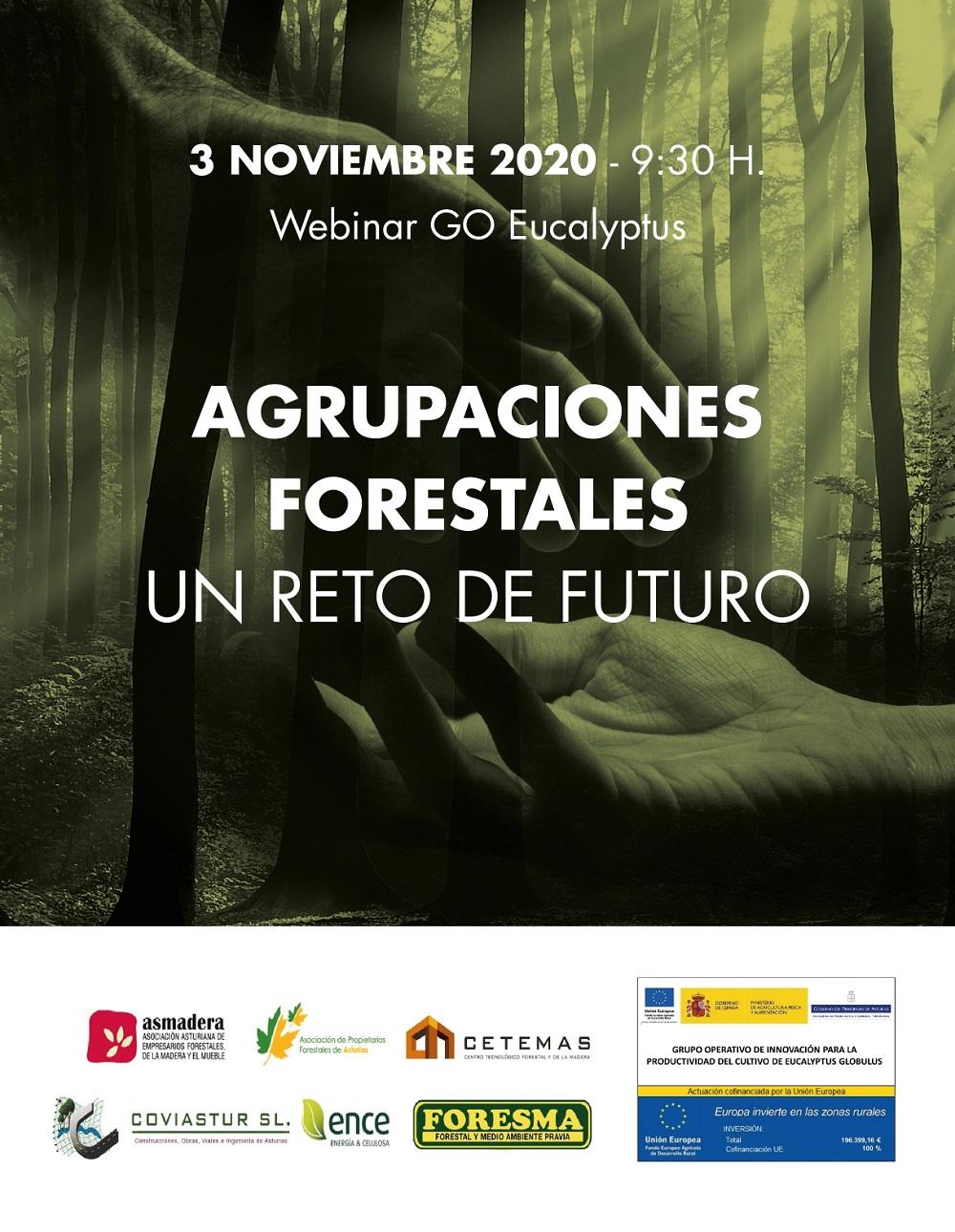 Agrupaciones forestales