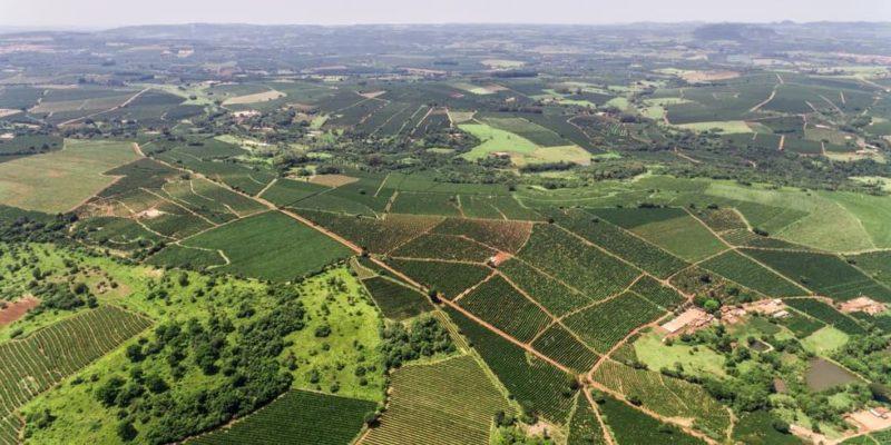 BASOA_paisaje_rural