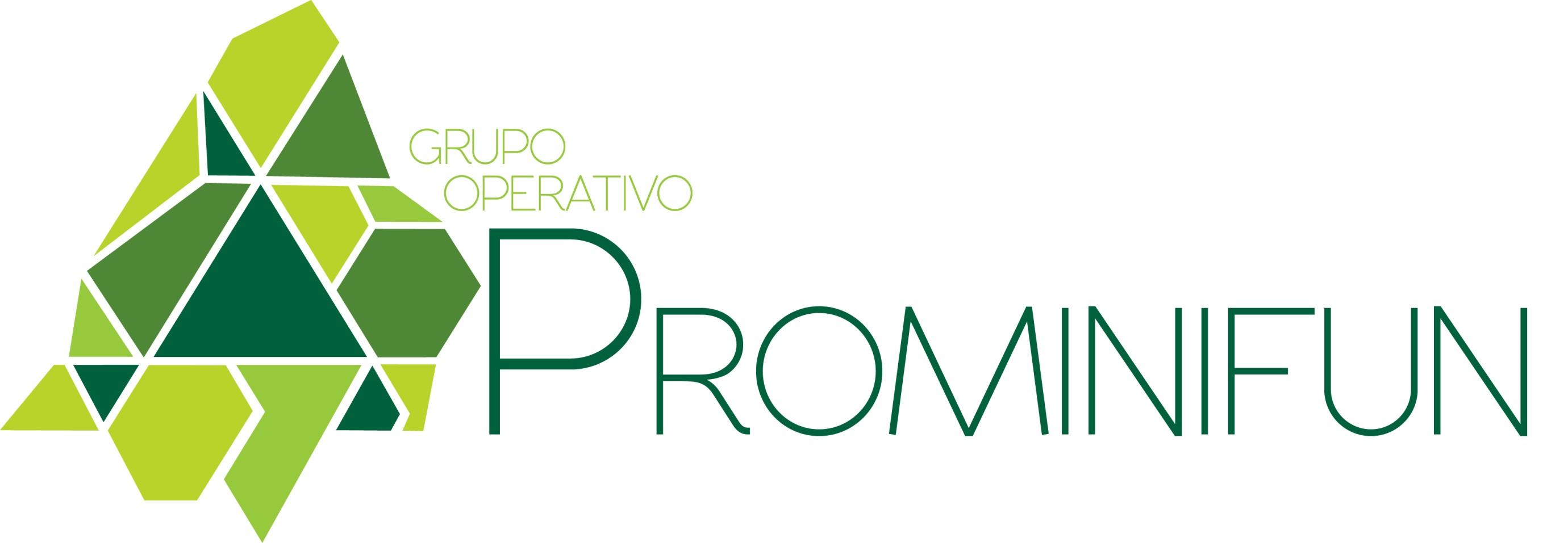 PROMINIFUN_logo