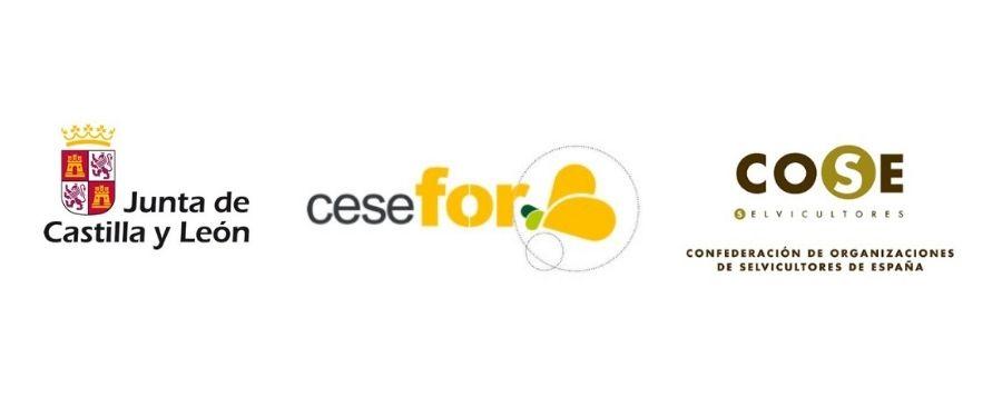 colaboradores de COSE