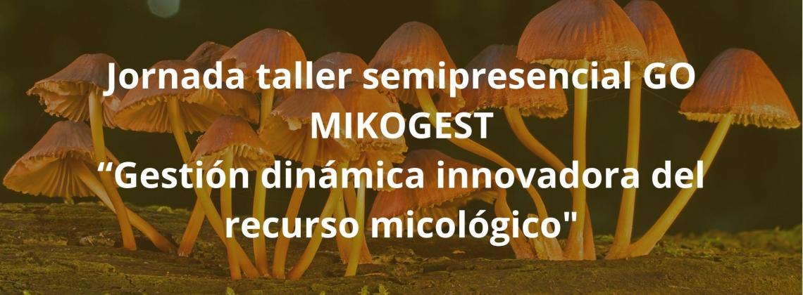 jornada_taller_semipresencial_go_mikogest